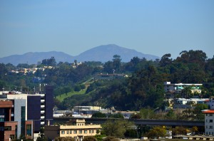 Diamond-Terrace_East-Village_San-Diego-Downtown_sundeck-view-6